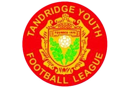 Tandridge Youth Football League logo
